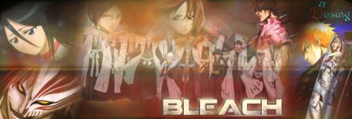 bleach2.png