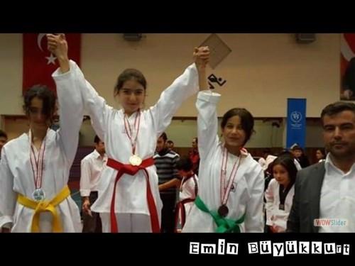 eminbuyukkurttaekwondoIsparta20.jpg