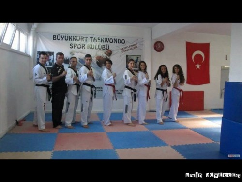 eminbuyukkurttaekwondoIsparta21.jpg