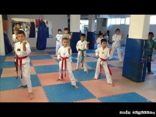 eminbuyukkurttaekwondoIsparta28.jpg