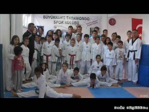 eminbuyukkurttaekwondoIsparta30.jpg