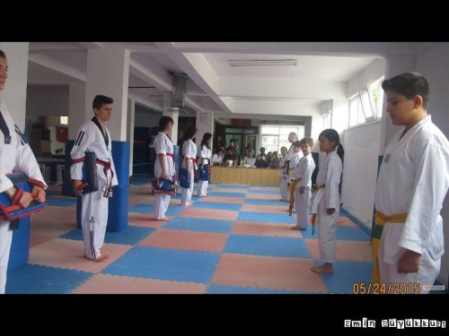 eminbuyukkurttaekwondoIsparta31.jpg
