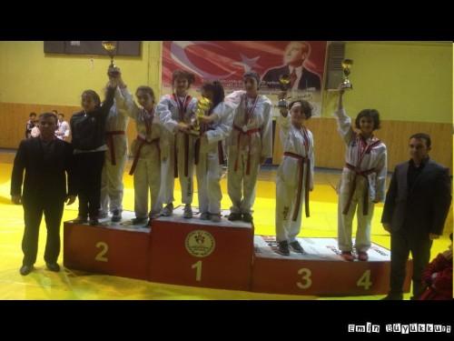 eminbuyukkurttaekwondoIsparta38.jpg